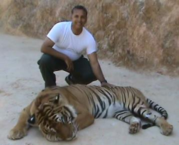 With a tiger at the monastery